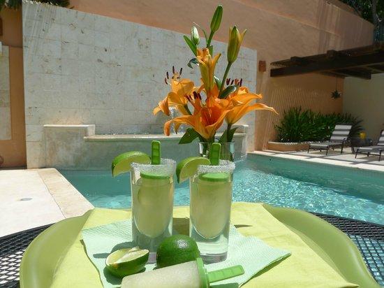 Hotel Villa Verde Merida : Margarita Popsicles