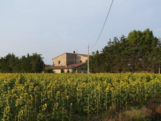 Agriturismo Biologico La Cortevilla: Veduta Agriturismo Cortevilla