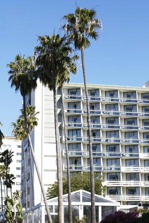 Fairmont Miramar Hotel & Bungalows: Fairmont Miramar