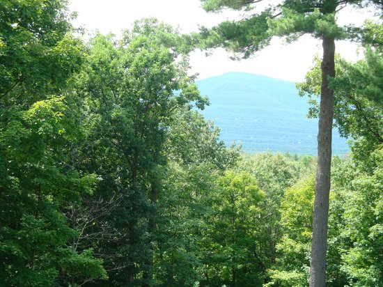 The Grouse House Bed and Breakfast: Overlook Mountain from the patio