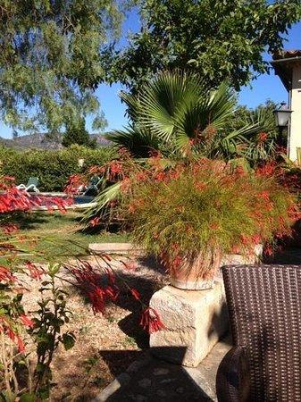 Ca'n Quatre Finca-Hotel: paradise