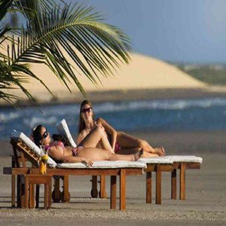 My Blue Hotel: Mosquito-s Beach