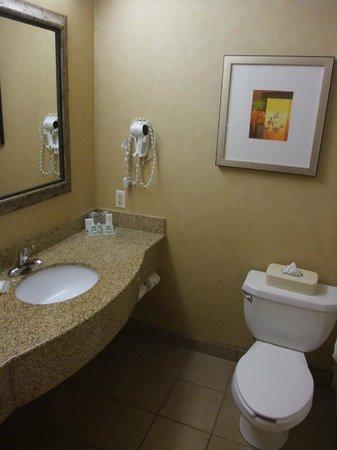 Hilton Garden Inn Valencia Six Flags: Bad mit Waschbecken und WC