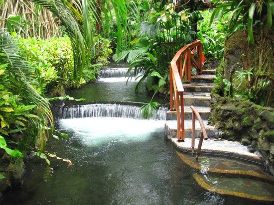 Foto de Tabacon Thermal Resort & Spa, La Fortuna de San Carlos ...