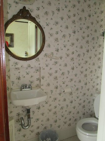 Triangle Ranch Bed & Breakfast: the closet withe toilet and sink