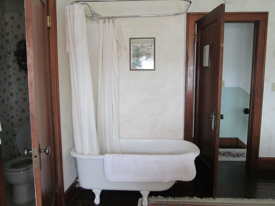Triangle Ranch Bed & Breakfast: the bathtub in the room