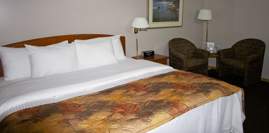 Riviera Motor Inn: King Room