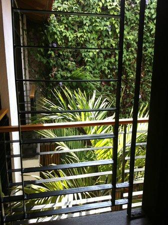 Aluna Casa y Cafe: Blick aus dem Zimmer im 1. OG