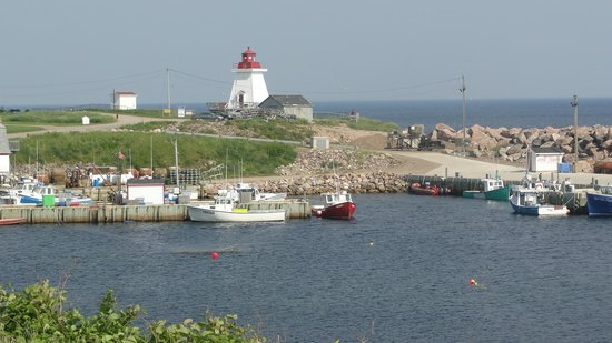 Lighthouse Ice Cream Parlour : Neil's Harbour, located between Ingonish and Dingwall