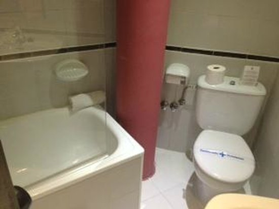 Hotel Medicis : アメニティーは石鹸とシャンプーのみ
