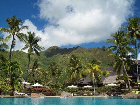 Hilton Moorea Lagoon Resort & Spa: beautiful backdrop to the pool and resort!