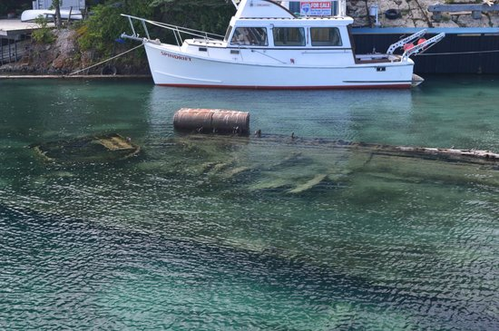 Blue Heron Cruises: Second shipwreck