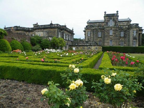 Seaton Delaval Hall: Formal gardens