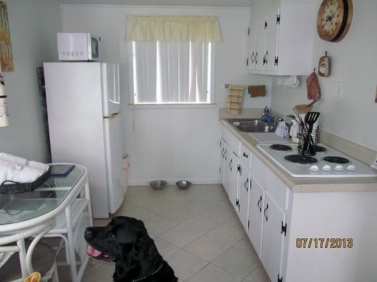 Tropical Winds Motel & Cottages: Kitchen had so much room!