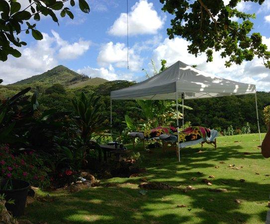Mana Massage Kauai : Quiet and relaxing.  Listen to the birds & gentle breezes.