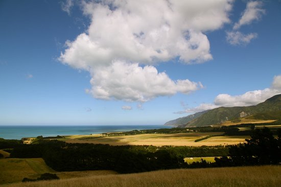 Wharekauhau Country Estate: Pacific view