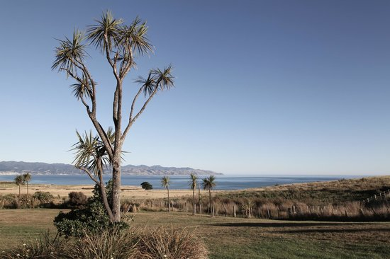 Wharekauhau Country Estate: Pacific and Cape Palliser view