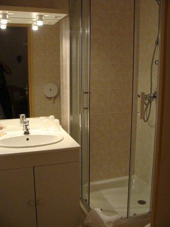 Hotel Le Francais : Bathroom