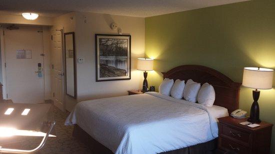 Hilton Garden Inn Islip/MacArthur Airport: Rm 415