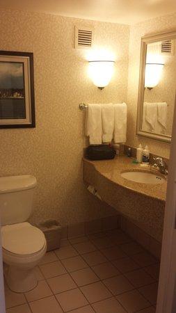 Hilton Garden Inn Islip/MacArthur Airport: Rm 415 Bathroom