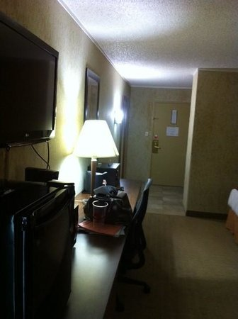 Oasis Hotel and Convention Center, an Ascend Hotel Collection Member: room - flat screen tv