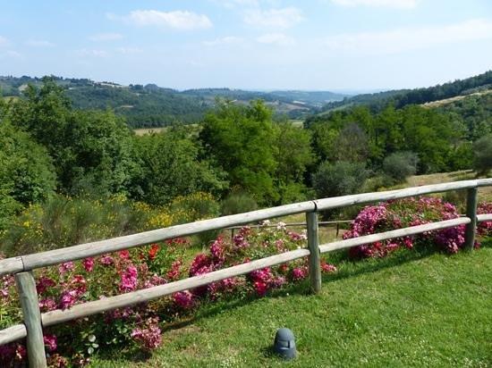 Torraccia di Chiusi: View from the pool area