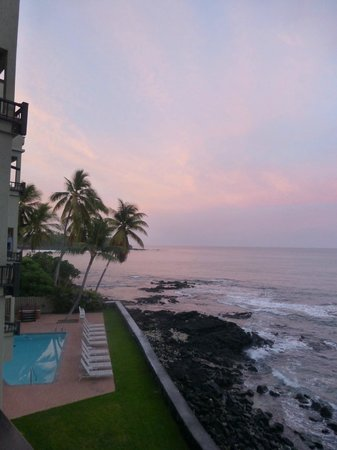 Kona Banyan Tree: view