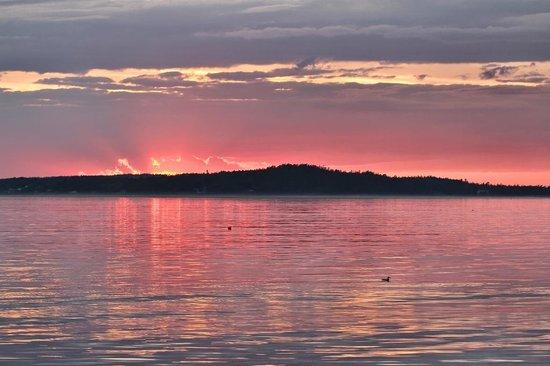Islander Half-Day Fishing Trips: Beautiful sunset!