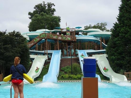 Water Country Usa Busch Gardens Packages Garden Ftempo