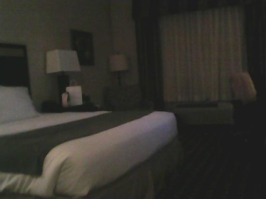 Holiday Inn Express Hotel & Suites Limerick: bed