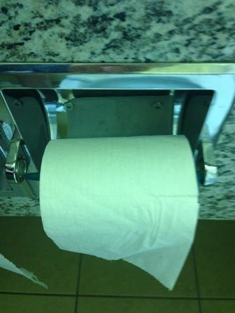 Ramada Limited Golden: This is how we found our toilet roll holder. I guess it could come in handy if your working on a