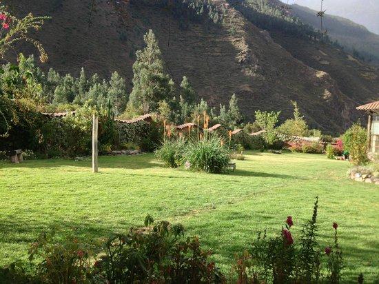 The Green House Peru: Udsigt fra mit værelse over den frodige have