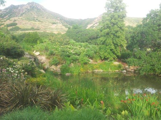Beautiful Gardens Picture Of Red Butte Garden Salt Lake City Tripadvisor