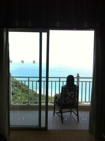 Hualien FarGlory Hotel : 窗外景觀秀麗。