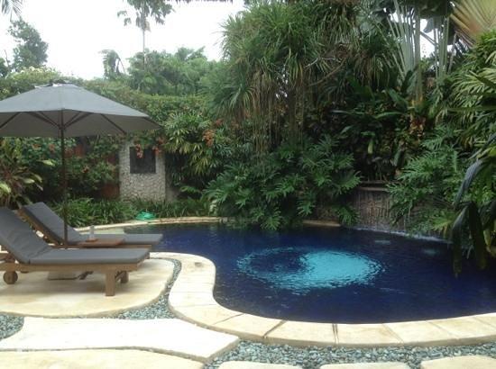 The Villas Bali Hotel & Spa : cool pool.