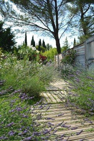 Chambres de l'Artemise: Jardins photographiques
