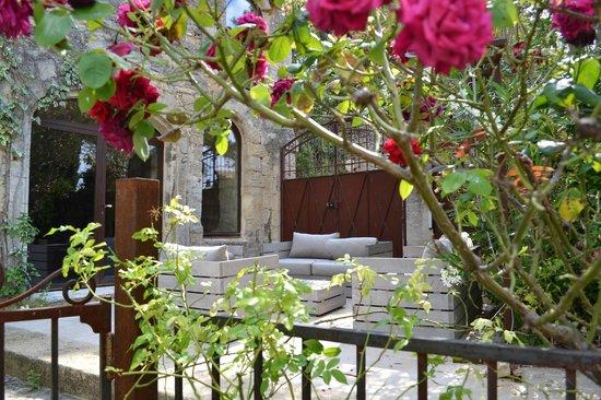 Chambres de l'Artemise: Derrière les roses, le spa