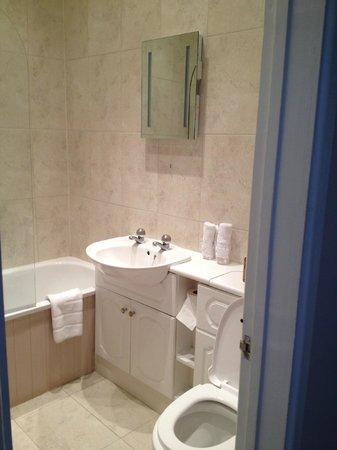 Ty Croeso Bed & Breakfast: Bathroom