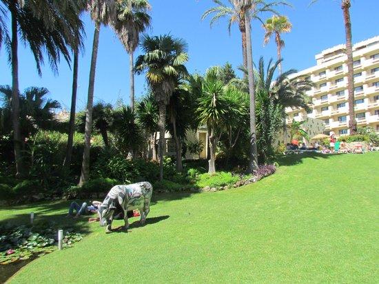 Royal Al-Andalus : jardin