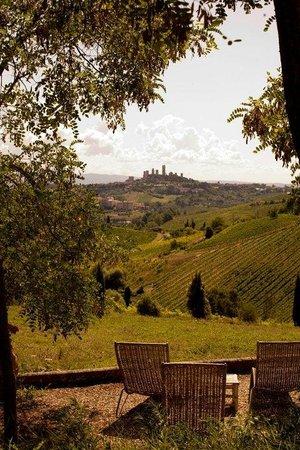 Fattoria di Fugnano: the view