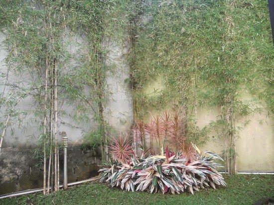 Grha Ciumbuleuit Guest House : good garden