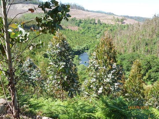 Casa Grande do Bachao: Bajando al río