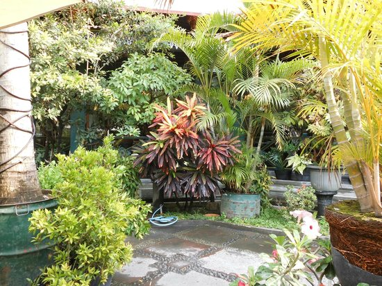 Sekar Kedhaton Boutique and Restaurant : Garten