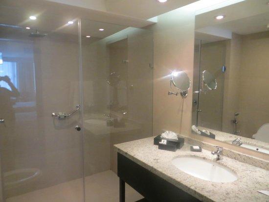 Hotel Oro Verde Cuenca : baño