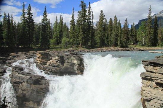 Jasper, Canada: Athabasca Falls
