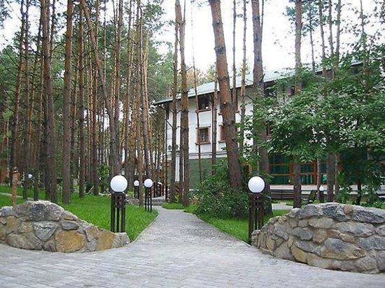 Health Resort Yarina : Территория в сосновом лесу