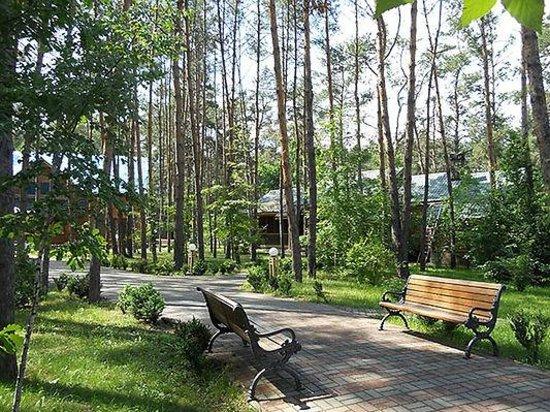 Health Resort Yarina : Территория комплекса