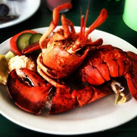 Sea Gull Restaurant : seagull restaurant lobster supper