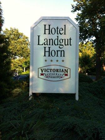 Hotel Landgut Horn: Einfahrt