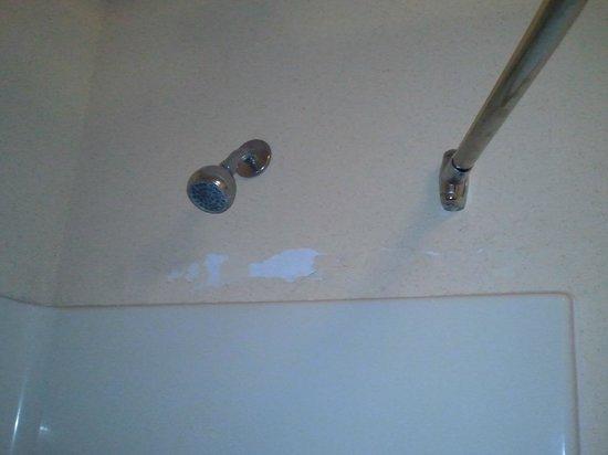 Baymont Inn & Suites Waycross: Peeling paint over shower.